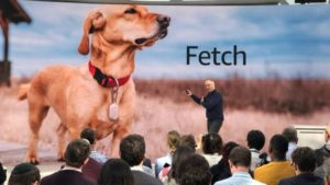 Amazon Fetch